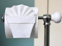 Residential Maid Service in Arlington, Texas | The Pampered House - toilet